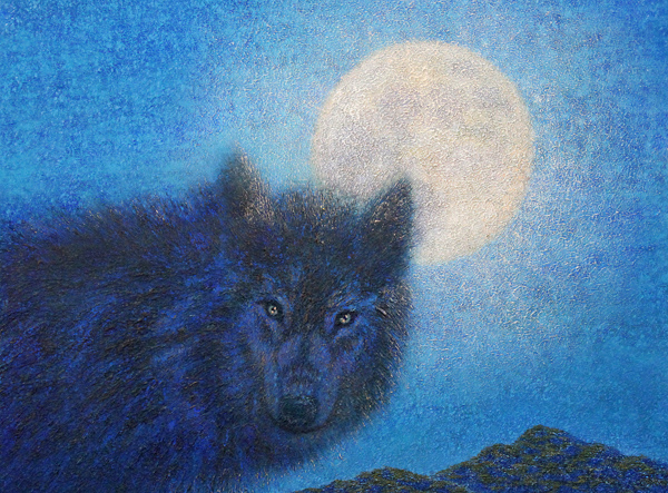 Black Wolf by Peter C. Stone