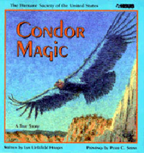 Condor Magic - Centered on the capture of the last few wild condors, how they were bred in captivity, and released north of the Grand Canyon
