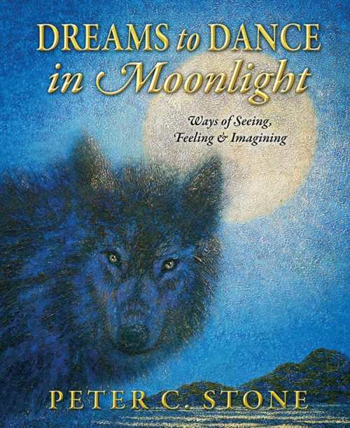 Dreams to Dance in Moonlight, Ways of Seeing, Feeling & Imagining by Peter C. Stone